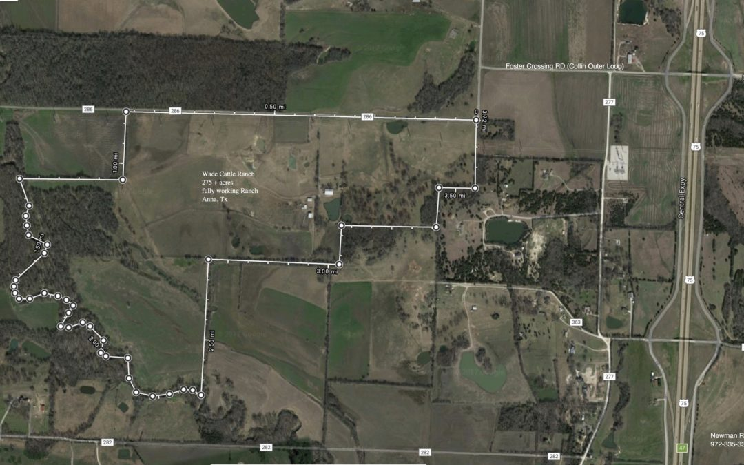 275+/- Acre Working Cattle Ranch
